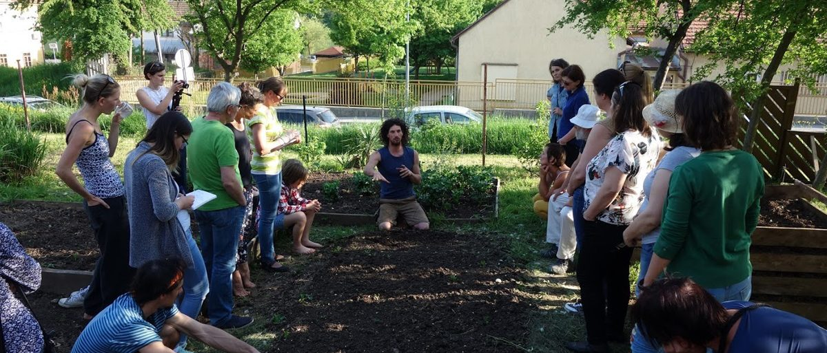 Permalink to: Urban Soil 4 Food